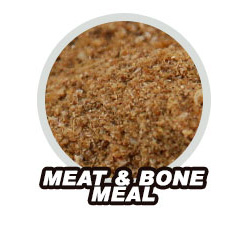Meat & Bone Meal
