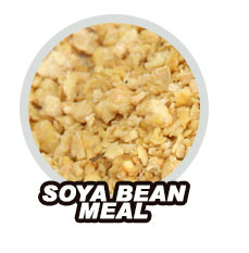 Soya Bean Meal