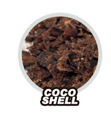 Coco Shell